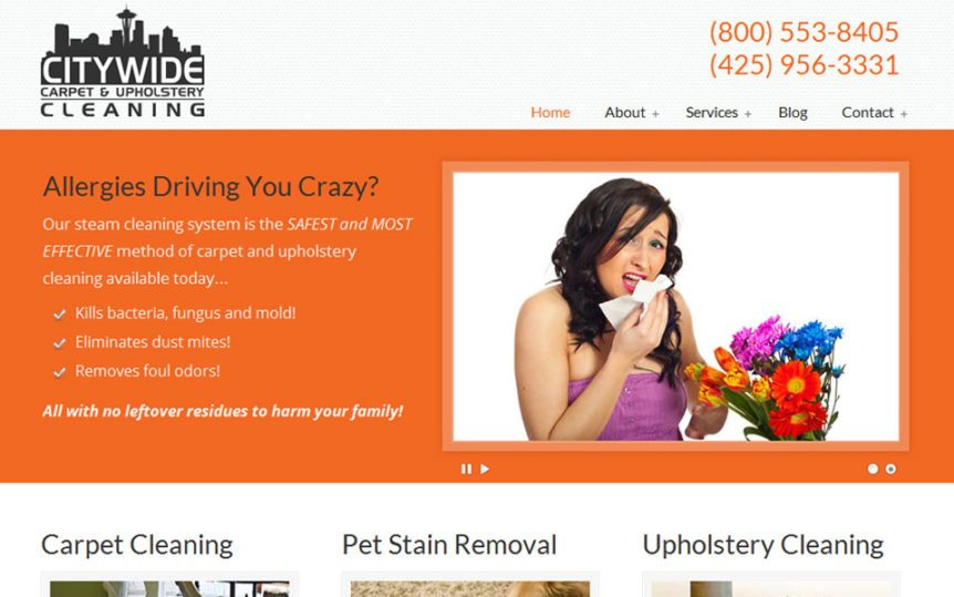 Website Samples by Online Marketing Muscle - Citywide Carpet & Upholstery Cleaning